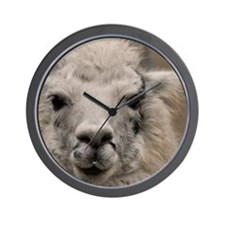 (4) Llama 8716 Wall Clock