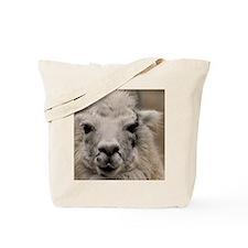 (4) Llama 8716 Tote Bag