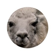 """(4) Llama 8716 3.5"""" Button"""