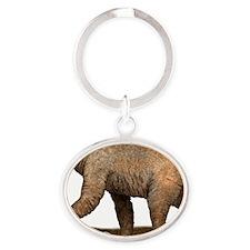 Short-Faced Bear Oval Keychain
