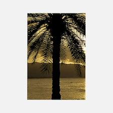 Sunset Haleiwa Rectangle Magnet