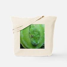 Tree python/chondro python Tote Bag