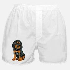 Gordon Setter Puppy Boxer Shorts