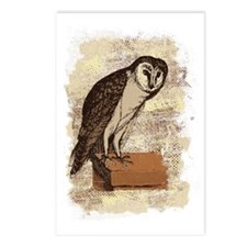 Barn Owl Postcards (Package of 8)