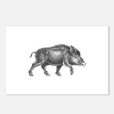 Wild Boar Postcards (Package of 8)