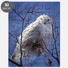 Snowy White Owl Puzzle