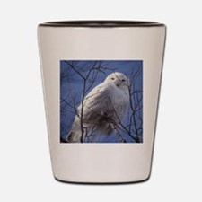 Snowy White Owl Shot Glass