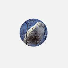 Snowy White Owl Mini Button
