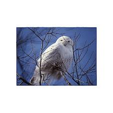 Snowy White Owl 5'x7'Area Rug