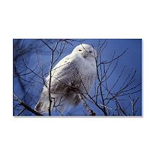 Snowy White Owl Car Magnet 20 x 12