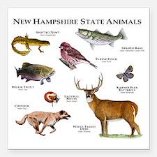 "New Hampshire State Anim Square Car Magnet 3"" x 3"""