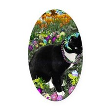 Freckles the Tux Cat in Easter Egg Oval Car Magnet
