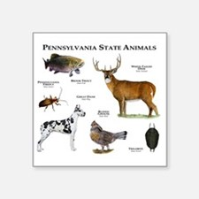 "Pennsylvania State Animals Square Sticker 3"" x 3"""