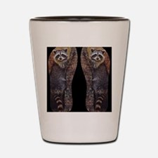Raccoon Shot Glass