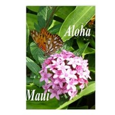 Passion Vine Butterfly Postcards (Package of 8)