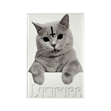 LUCIPURR Rectangle Magnet