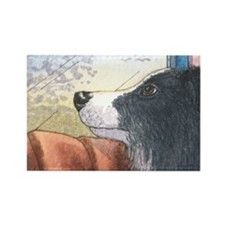 Border Collie dog waiting in car Rectangle Magnet