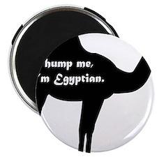 Hump Me, I'm Egyptian Magnet