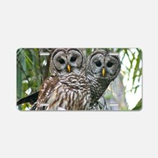 Barred Owl Pair Aluminum License Plate