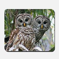Barred Owl Pair Mousepad