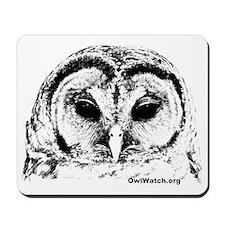 Barred Owl (Adult1) Mousepad