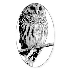 Mr Barred Owl Decal