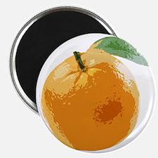 Orange Fruit Navel Valencia Naranja Magnet