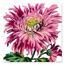 "Pink Chrysanthemum Square Car Magnet 3"" x 3"""