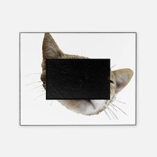 Happy Kitty Face Picture Frame