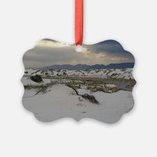 White Sands Ornament