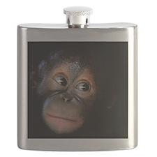 Orangutan Flask
