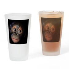 Orangutan Drinking Glass