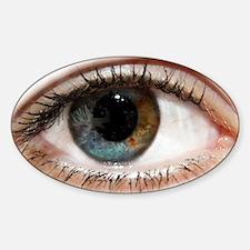 I got my eye on you Sticker (Oval)