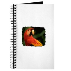 BEAUTIFUL PARROT Journal