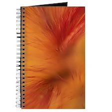 Willow Grass on Orange Journal