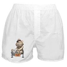 Do not feed Boxer Shorts