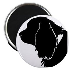 Sussex spaniel silhouette Magnet