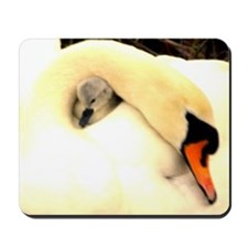 Mother Swan and Baby Mousepad