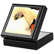 Mother Swan and Baby Keepsake Box
