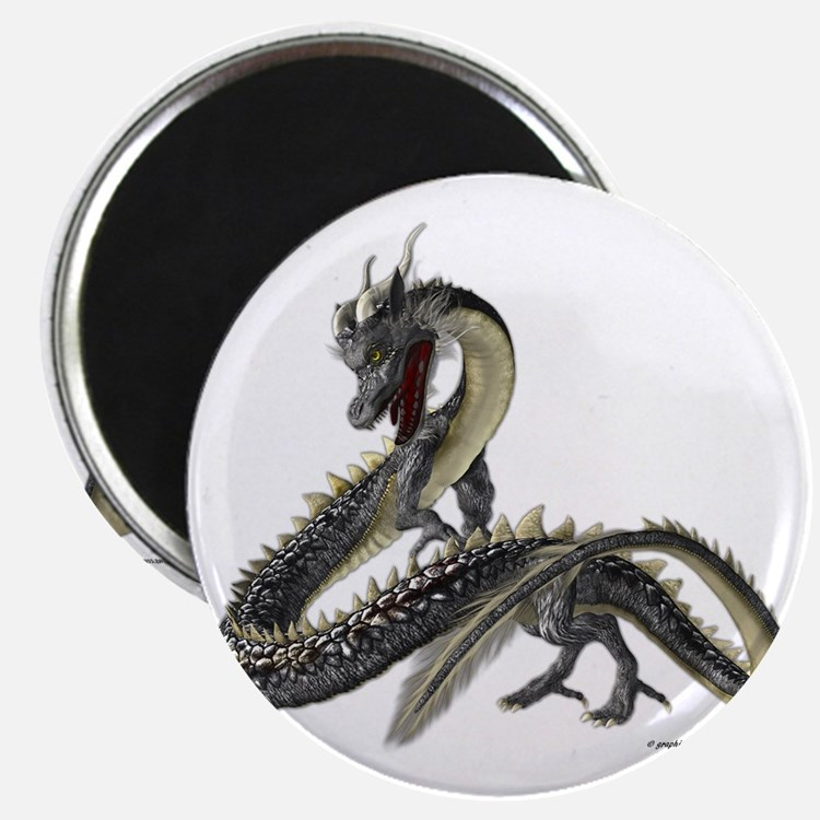 The Silver Dragon Magnet