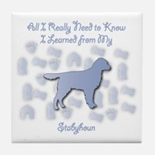 Learned Stabyhoun Tile Coaster