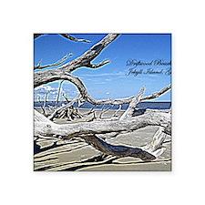 "Driftwood Beach Square Sticker 3"" x 3"""