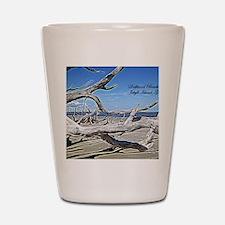 Driftwood Beach Shot Glass