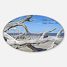 Driftwood Beach Sticker (Oval)