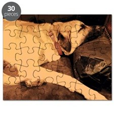 Anatolian Couch Potato Puzzle