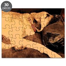 Anatolian Couch Potato Puzzle