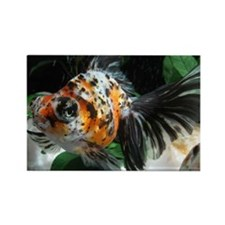 Calico Puzzle Image Rectangle Magnet