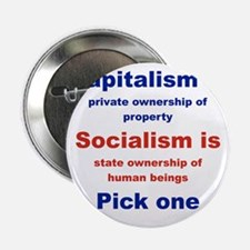 """CAPITALISM IS... SOCIALISM IS... 2.25"""" Button"""