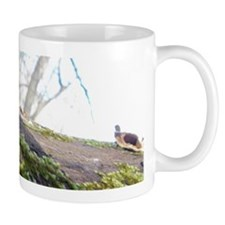 100_7352 Mug