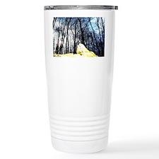 100_7326 Travel Mug